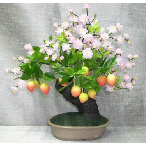 Prunus artificial bonsai tree asian decor oriental wall fans and chinese umbrellas from - Decorative trees with red leaves amazing contrasts ...