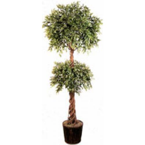 6 Foot Double Ball Ruscus Topiary Tree