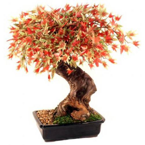 Artificial Japanese Maple Bonsai Tree - Large