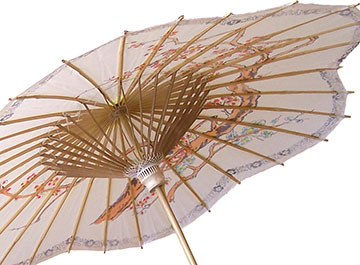 Shop Asian Umbrellas