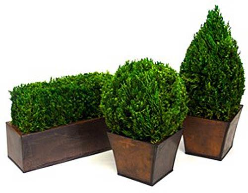 artificial topiary :: tabletop topiary set (3 pieces)