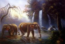 River Elephants ::