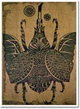 Japanese Beetle ::