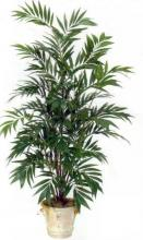 6 foot Asian Bamboo Palm Tree :: Artificial House Plants