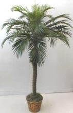 "55"" Tropical Phoenix Palm :: Artificial House Plants"