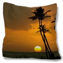 Tropical Sunset Throw Pillow :: Asian Pillows