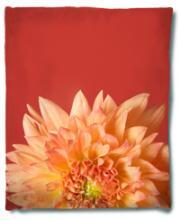 Coral Flower Blanket :: Asian Blankets