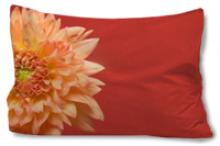 Coral Flower Pillow Case :: Asian Pillows