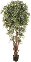 6 1/2 foot Deluxe Ruscus Tree :: Artificial House Plants