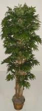"78"" Japonica Artificial Tree :: Artificial House Plants"
