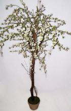 5 1/2 foot White Cherry Blossom Tree :: Artificial House Plants