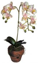14 inch Mini Cymbidium Pink Orchid :: Artificial Orchids