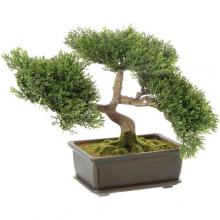 Artificial Japanese Tea Leaf Bonsai Tree :: Artificial Bonsai Trees