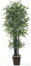 8 foot Black Bamboo Tree :: Artificial House Plants