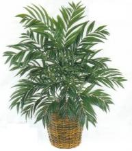 30 inch Silk Butterfly Palm :: Artificial House Plants