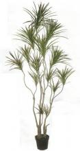 8 foot Silk Dracaena Tree :: Artificial House Plants