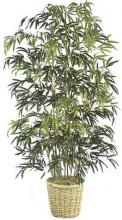 Silk Bamboo Tree :: Artificial House Plants