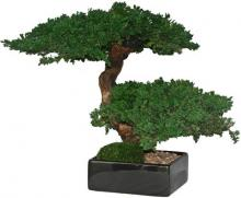 Double Monterey Bonsai tree :: Artificial Bonsai Trees