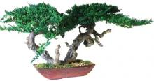 Sokan Bonsai :: Artificial Bonsai Trees