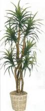 5 foot Silk Yucca Plant with 5 heads :: Artificial House Plants