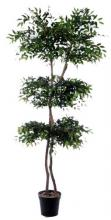 Oriental Smilax Tree :: Artificial House Plants