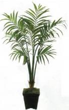 7 foot Kentia Palm :: Artificial House Plants
