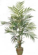 New Kentia Palm :: Artificial House Plants