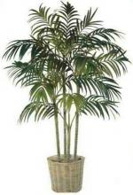 9 foot Golden Cane Palm :: Artificial House Plants