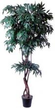 Artificial Mango Tree :: Artificial House Plants