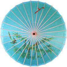 The Blue Parasol ::