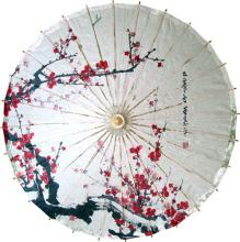 Snow Clean Blossoms :: Paper Umbrellas