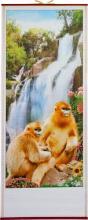 Beautiful Orangutans :: Chinese Scrolls