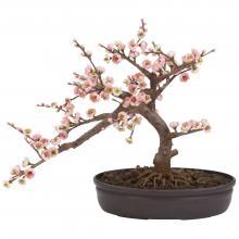 Cherry Blossom Bonsai Silk Tree :: Artificial Bonsai Trees