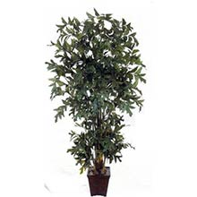 8 foot Fishtail Palm Artificial Tree